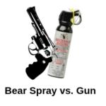 Bear Spray vs. Gun / Which is Best For Self Defense