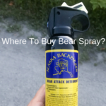 Where To Buy Bear Spray And How Much Does It Cost?