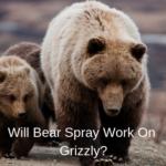 Does Bear Spray work on Grizzly Bear?