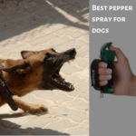 The Best Pepper Spray for Dog Attacks