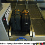 Bear Spray is not allowed In checked luggage, but you can do this